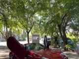 抵押车出售13年奔驰SLK跑车